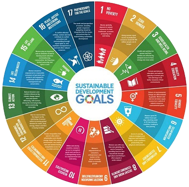 17 International Goals